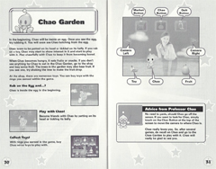 pet rock instruction manual